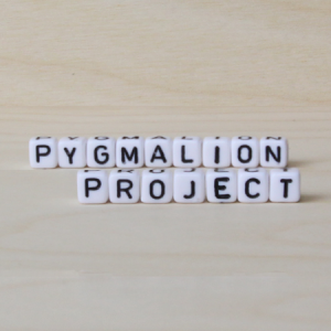Pymalion_project